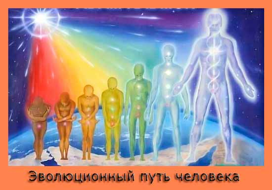 Суть эволюции человека.